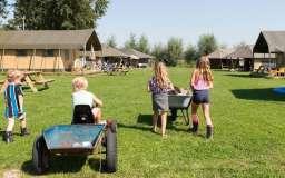 Farmcamps Oranjepolder (safaritent) Arnemuiden